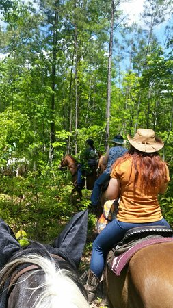 New Bern, Karolina Północna: enjoying a sunny day with Croatan Trail Adventures