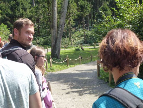 Abenteuer Affenberg tt.: It was busy