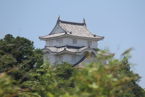 Otaki-machi, Japan: 町のシンボル