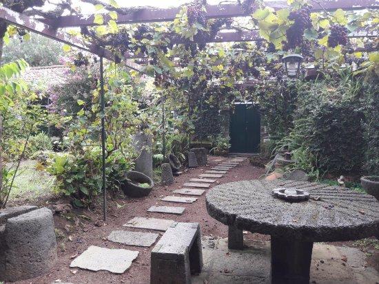 Sao Vicente Ferreira, Portugal: Garten