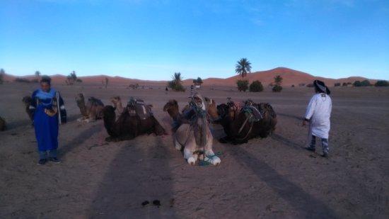 Riad Mamouche: リヤドの目の前がサハラ砂漠です
