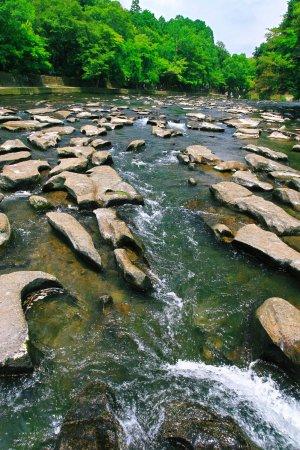 Sekinoo Fall : 夏の関之尾滝・その3