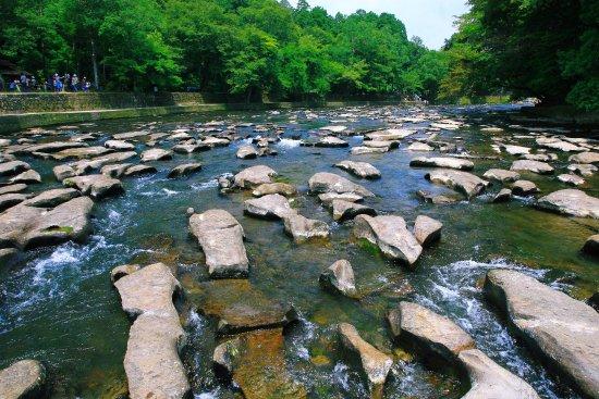 Sekinoo Fall : 夏の関之尾滝・その4