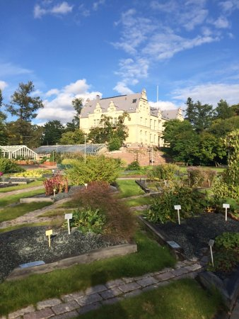 Botanical Gardens: территория сада