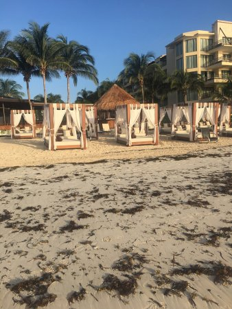 Dreams Riviera Cancun Resort & Spa: Paradise