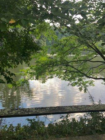 Stony Brook, Estado de Nueva York: Avalon Park & Preserve