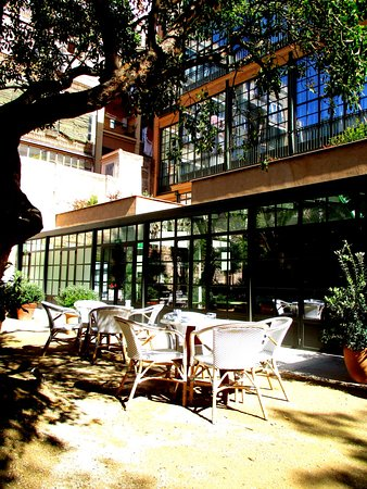 Terraza jard n del hotel picture of h10 casa mimosa for Hotel jardin barcelona