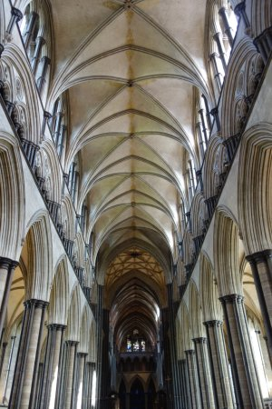 Salisbury Cathedral and Magna Carta: ein Blick in das Deckengewölbe der Kathedrale