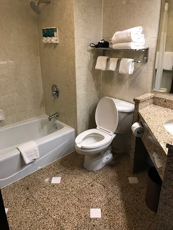 Drury Inn & Suites Detroit Troy: photo2.jpg