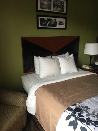 Sleep Inn & Suites Montgomery: photo5.jpg