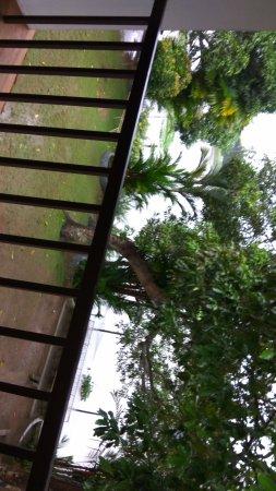 Green Palace Kerala Resort: IMG_20170917_080738_large.jpg