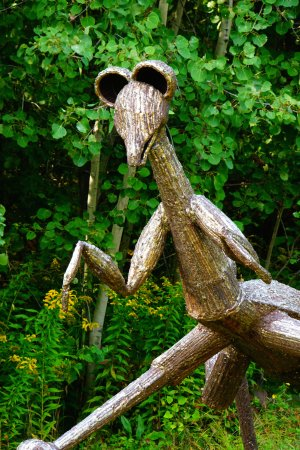 Ellicottville, Estado de Nueva York: Praying mantis on the hill