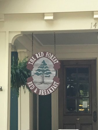 Red Forest Bed and Breakfast: photo2.jpg