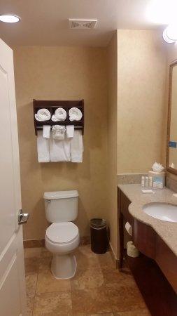 Hampton Inn Orlando/Lake Buena Vista: Banheiro limpo e espaçoso