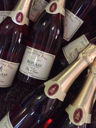 Calitzdorp, South Africa: Boplaas Pinot Noir Brut