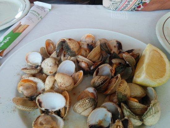 El Masnou, Spanje: ´Berberechos, muy buenos