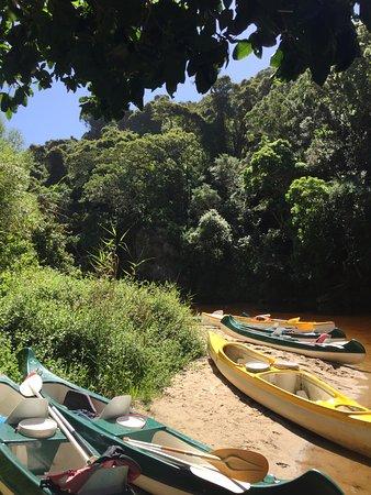 Wilderness, Republika Południowej Afryki: Kingfisher Trail
