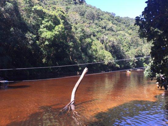 Wilderness, Güney Afrika: Kingfisher trail