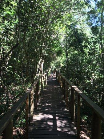 Wilderness, Republika Południowej Afryki: Kingraiser trail