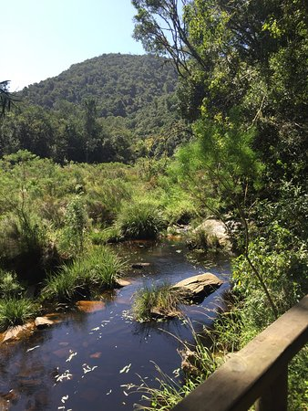 Wilderness, South Africa: Kingfisher trail