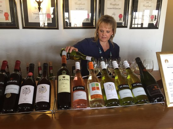 Calitzdorp, South Africa: Wine Tasting room