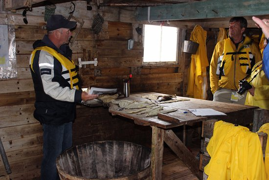 Rugged Beauty Boat Tours : Bruce explaining the cod preparation and salting process