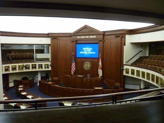 New Capitol Building : House of Representatives