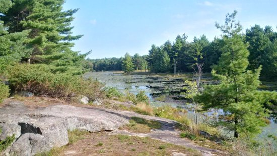 Port Severn, Canadá: The David Milne Trail