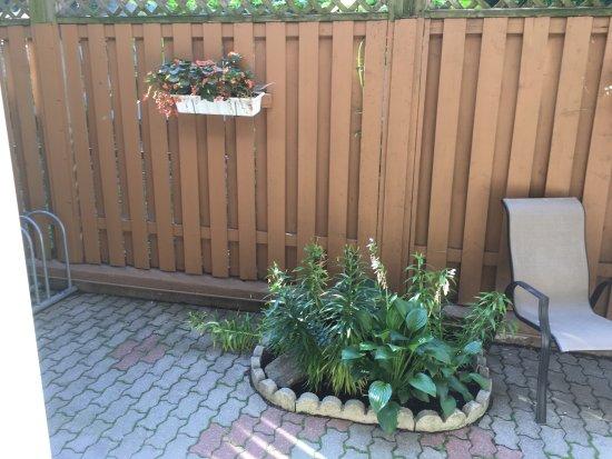 Terrasse photo de auberge le jardin d 39 antoine montr al - Terrasse jardin botanique montreal poitiers ...