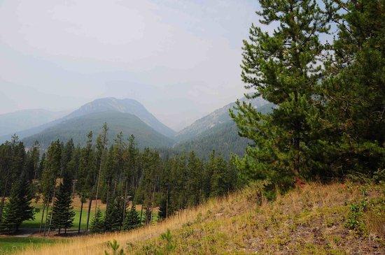 Zdjęcie Panorama