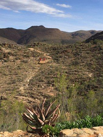 Oudtshoorn, Afrique du Sud : Zipline
