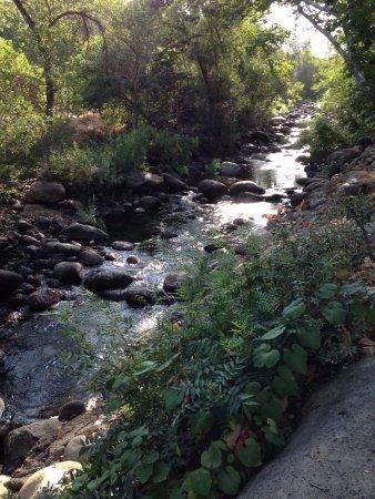 Three Rivers, Californien: Backyard serenity