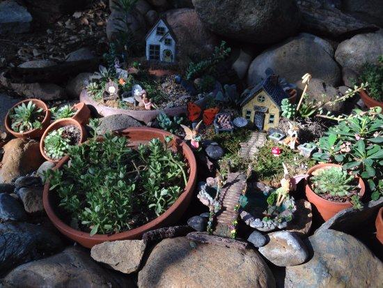 Three Rivers, Californien: Fairy garden delight!