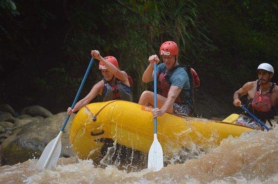 Quepos, Costa Rica: Action photo