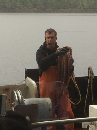 Bering Sea Crab Fishermen's Tour : Up close and personal with an octopus.