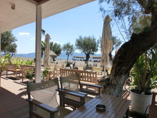 Skala Kallonis, Grécia: Beach Club in Skala Kalloni