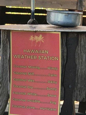 Wailuku, Hawái: Maui weather station.