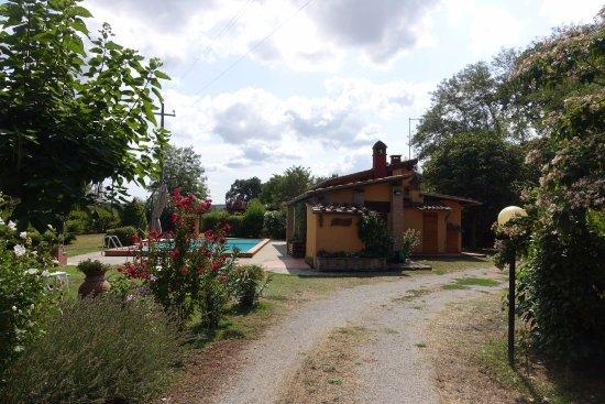 Bucine صورة فوتوغرافية