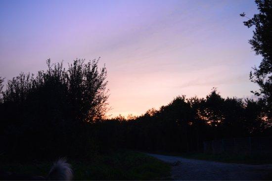 Domaine de La Ville Huchet : photo0.jpg