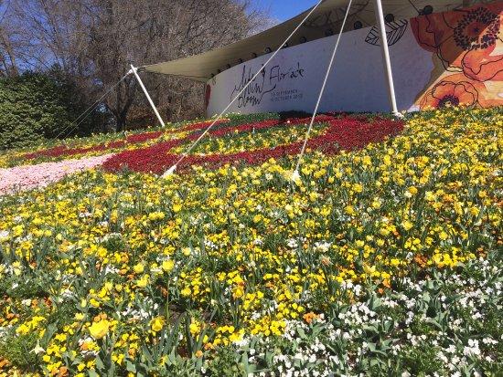 Floriade: photo0.jpg