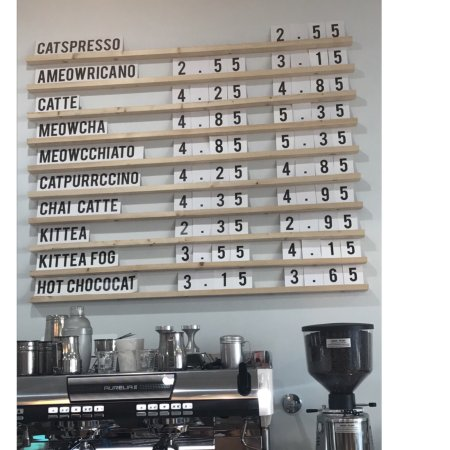 Cat Cafe On Whyte Reviews