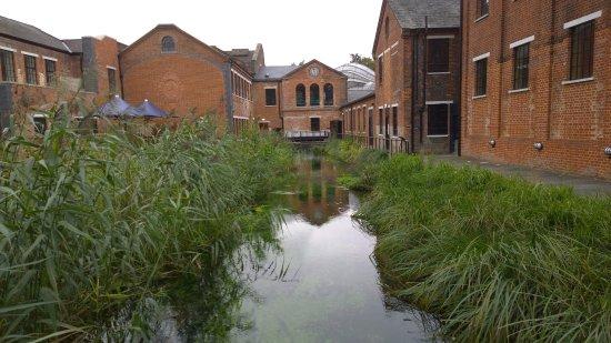 Whitchurch, UK: Ruscello di acqua limpida ed alcalina purificata dal gesso usata nella distilleria