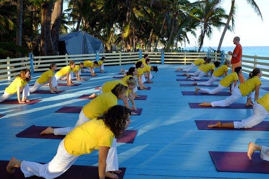 Sivananda Ashram Yoga Retreat照片
