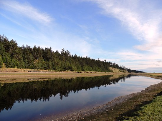 Tlell River walk