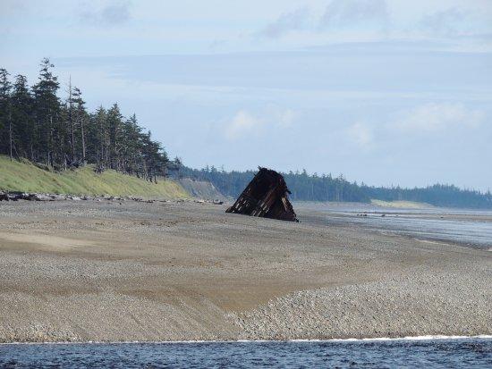 Tlell, Kanada: The Pesuta Wreck
