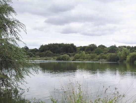 Hatfield Forest Nature Reserve: Hatfield Forest