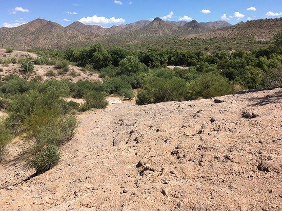 Cave Creek, AZ: photo0.jpg