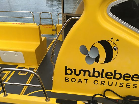 Bumblebee Boat Cruises (St Peter Port) - Updated 2019 - All