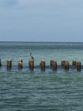 Bradenton Beach, FL: photo1.jpg
