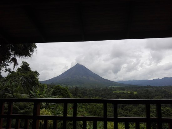 Lost Iguana Resort & Spa: The actual view from room 7 at Orquideas community